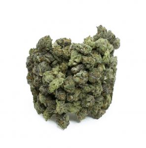 Gelato – Small Buds